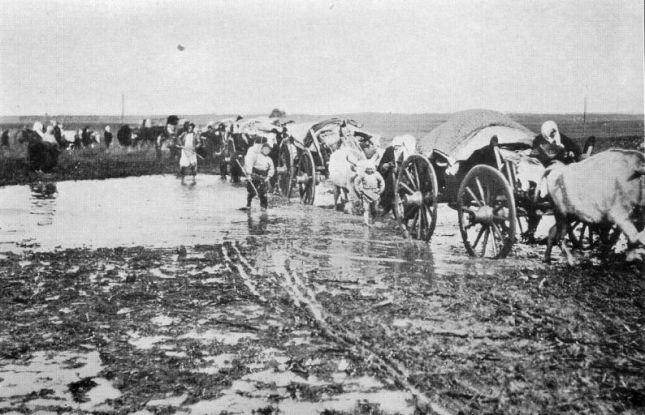 Djepat shqiptar dhe ritet tjera dhe foto historike - Faqe 5 FOTOpRESHEVA