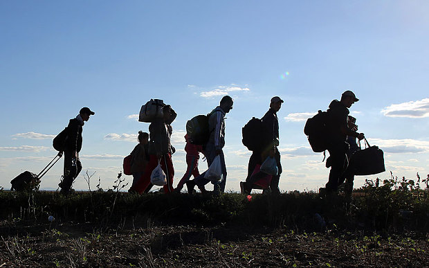 Migrants-walk-towa_3448371b